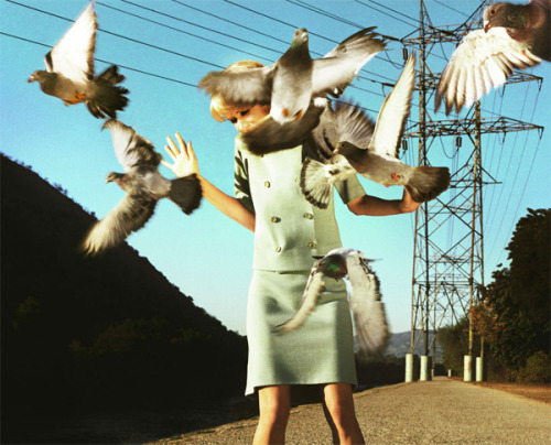 Photography by Alex Prager