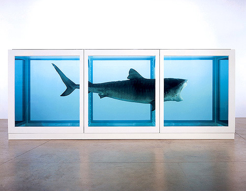 "Damien Hirst, The Physical Impossibility of Death in the Mind of Someone Living Jeff Koons was at one time the living artist whose work had sold at the highest price, $23 million for one of his Hanging Hearts. Since then Lucien Freud sold a piece for over $33.6 million and Damien Hirst is, cynically to my mind, asking for $100 million for one of his diamond covered crystal skulls (people say diamond ""encrusted"" but let's just call it diamond covered). Diamond Skull called For the Love of God - Hirst went from great stuff like these sometimes bi(tri)sected gross animals: …Away From the Flock from the ""Natural History"" series. Which an artist-vandal modified: Black Sheep once dye is added. …and Pharmacy …and the Spot Paintings.  About the Spot Paintings he said that he ""only painted five spot paintings himself because, 'I couldn't be fucking arsed doing it'; he described his efforts as 'shite'—'They're shit compared to … the best person who ever painted spots for me was Rachel. She's brilliant. Absolutely fucking brilliant. The best spot painting you can have by me is one painted by Rachel.'"" Here is one reinvention for charity of a spot painting with the background having the dual advantage of having as its subject the coolest car ever made, the Citroen DS, and the fact that the car was painted by the bassist from The Clash: here  One for £1.05 or the Mars lander version He once even sued himself for breach of copyright, which is a great thing for an artist to do.  - Finally, he has settled on things like 25 years worth of rehashing the spot paintings, the crap Swarovsky crystal skull and this painting, which he found in the corner of his studio under some old sheets of plexiglass and has decided to recycle (I suspect he secretly painted it in his first year of college).  - Versions of Hirst work by others: The spot paintings have been modified by all kinds of folks, including Banksy here and here  Here is a version of a Spot Painting from someone who is not a fan. One of the many pastiches of The Physical Impossibility of Death in the Mind of Someone Living: David Černý, Shark, with Saddam Hussein. And Seapig (inflatable toy shark shark) by Dave Murray http://davidamurray.net/sharkL.html More riffs on the Hirst Swarovsky skull theme if you scroll down a bit: http://search.it.online.fr/covers/ - Hirst's work as versions of others' Dot painting, François Morellet, 1954 Dot painting, Vera Molnar, 1955 - Some related artists and articles: cartяain: If the art weren't so amateur I would think that he and Hirst were in on the whole thing.   - The K Foundation, Burn a Million Quid (£1,000,000) It seems likely that they did not actually burn the money but that's not the point. They have also made a number of (deliberately bad) rip-off Hirst pieces which they have sold as a provocation to Hirst. I like artists who react to the way a segment of the art world seems to value money as the highest consideration - these guys have a certain perspective and a desire and ability to spend money on making a unique critique. - Here is Hirst reinforcing the value of a piece of art as whatever it can sell for as opposed to its value as an art object: http://www.economist.com/node/16990811 The Mugrabi family of art collector-dealers driving up the price of Hirst's work Robert Hughes right on the money and artfully interviewing Alberto Mugrabi - Hirst plagiarism claims and The Art that Damien Hirst Stole - And finally, on the topic of all the 11 Gagosian Galleries in the world getting a bunch of Hirst spot paintings back from their owners for a big retrospective: ""I'm going to lay this down, just to clarify, so that nobody from the future gets confused: we hate this shit. Everyone hates this shit. These spots reflect nothing about how we live, see, or think, they're just some weird meme for the impossibly rich that nobody knows how to stop."" - A nice Hirst biography here"