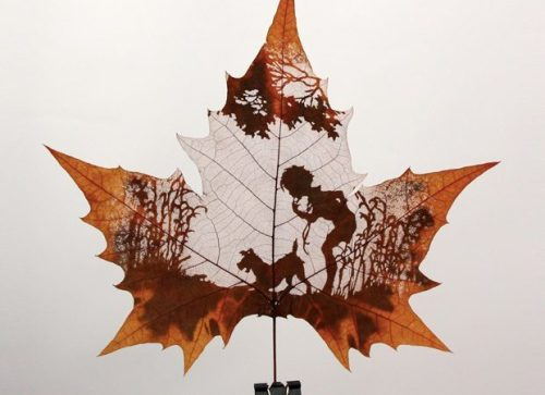 liahmoss:  Cut out leaf art!