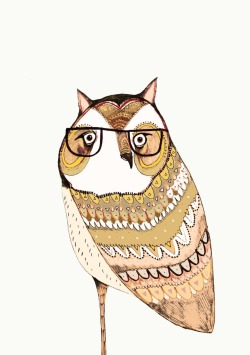 Wise owl says Hullo.