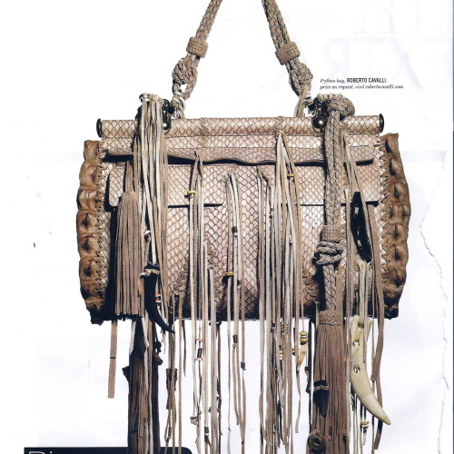 tumblr lfndogruar1qa2i47o1 500 Roberto Cavalli DIVA bag. I'm scared.. in a good way. [Feb...