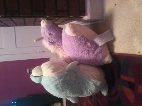 The text message pictures I get… pillow pet porn… there is some sick people in the world!