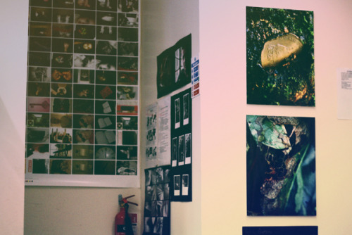 Hey yo, say hello to the wall in our photography classroom! The photographs on the right are probably the only displays that I like in our entire building. You'd think that the art department would look absolutely artsy-fartsy but nah, not really. No wonder I've no inspiration everytime I'm in class. Hmmm. ..