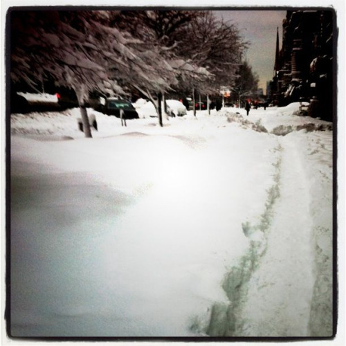 We prefer walking on a foot of packed snow vs. Shoveling in Harlem…