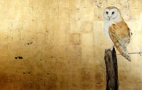 Imagine Gallery: Barn Owl