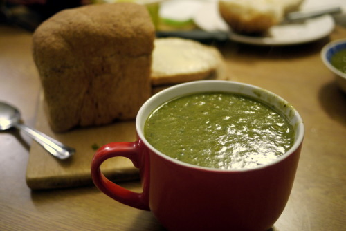 Very Green Soup Me and my awesome lady friend Chloe made an amazing organic cabbage, chard and leek soup this evening.  It also had green lentils, carrot and potato.  Basically just boil em all up for 20 minutes with garlic, veggie stock, thyme, basil, coriander and mint, then whizz, and serve with amazing wholemeal bread. Who said being vegan was hard?