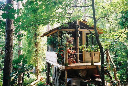 This reminds me of a cabin that my Dad and I would stay at on the river during our summer camping trips. :)