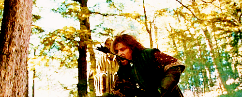 thiselvengirl:  reallyally:  ryanvang:  I love the moment when Boromir dies. All he ever did was whine. On to the Two Towers!  Back the fuck up. Boromir is one of the greatest characters in the entire trilogy. His mother died when he was 10 years old, leaving him to be shit on by his batshit crazy father, who had severe delusions of grandeur. His younger brother, whom he loves more than anyone else in Middle Earth, is constantly ridiculed and belittled by his father, while Boromir is put up on a pedestal. He's had to watch countless numbers of his friends die defending a kingless nation that has been slowly declining for the past 3,000 years. Sauron's forces keep getting stronger, while Gondor's forces keep getting weaker. Boromir knows that his people cannot endure much longer, yet he continues to fight for them. Imagine the guilt and regret that he had to deal with on a daily basis. Imagine the hopelessness that he had to ignore in order to serve a deranged old man and a ruined country. It breaks my heart just thinking about it. And then, Boromir comes into the presence of The Ring. In his eyes, he finally has an opportunity to fulfill his father's expectations. He's been fighting a losing battle against Mordor for so many years that he can't see any other goal besides the defense of his country. He believes that he has finally found the object that can restore his happiness. Then he is told that The Ring must be destroyed; an errand that Boromir believes in his heart to be hopeless. He knows that there is no way nine people can walk up to Mount Doom and toss The Ring in. He believes that they are all going to their doom. When Boromir tries to take The Ring, it isn't because he is greedy/corrupted, it's because he doesn't want to leave his people to die. He wants to know that he spent all those years fighting for a reason. And when Frodo refuses him and runs away, that's when Boromir finally realizes that he has become the man he hates the most: his father. But the amazing thing is, Boromir doesn't give up. Even though he believes that he has failed the entire Fellowship, he goes on to defend Merry and Pippin from the Uruk-Hai, sacrificing himself in the process. He admits to Aragorn what he has done and that in trying to save his people, he has brought forth their demise. But Aragorn promises him that he will not let that happen. Finally, for the first time in his life, Boromir has hope. He has hope that his people will survive and his country will return to it's former glory. And then he dies. That right there, is one of the saddest moments in the entire trilogy. Fuck you.
