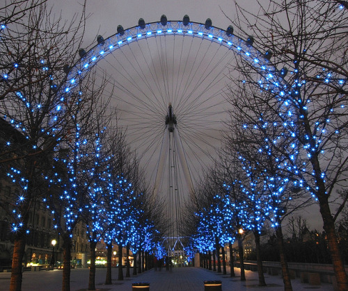 treeroots:  London Eye - like a sapphire ring …  By drypics