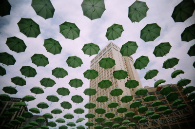 Under My Umbrella. (by Garbo Yau)