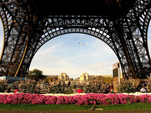 allthingseurope:  Eiffel Tower, Paris via