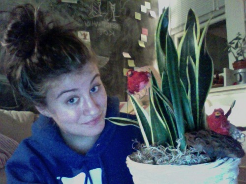 Exciting Sunday night news: I just re-potted this plant! I thought it was going to be super tricky and get dirt everywhere, but it really took just about three minutes! I refuse to give up on putting new plants into this basket because those ridiculously endearing cardinals came with the plant that originally lived in this basket, and I just can't let them go. My parents used to send plants to me in college to celebrate my minor accomplishments, like art shows or being in charge of things. All of the plants, ordered from Appleton's finest florist (sarcasm - there are actually two florists, but really?), came with little ornaments sticking out of the soil. I grew to love the tacky-chic that came par-for-the-course in Appleton, so every time this plant dies, I uproot the cardinals and stick a new plant in their pot. This is the first time that I've had to do an entire soil transplant, and it was absolutely worth it.