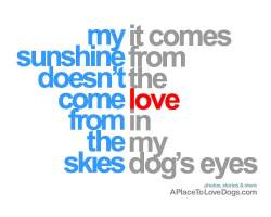 my sunshine doesn't come from the skies, it come from the love in my dog's eyes author unknown Original Article