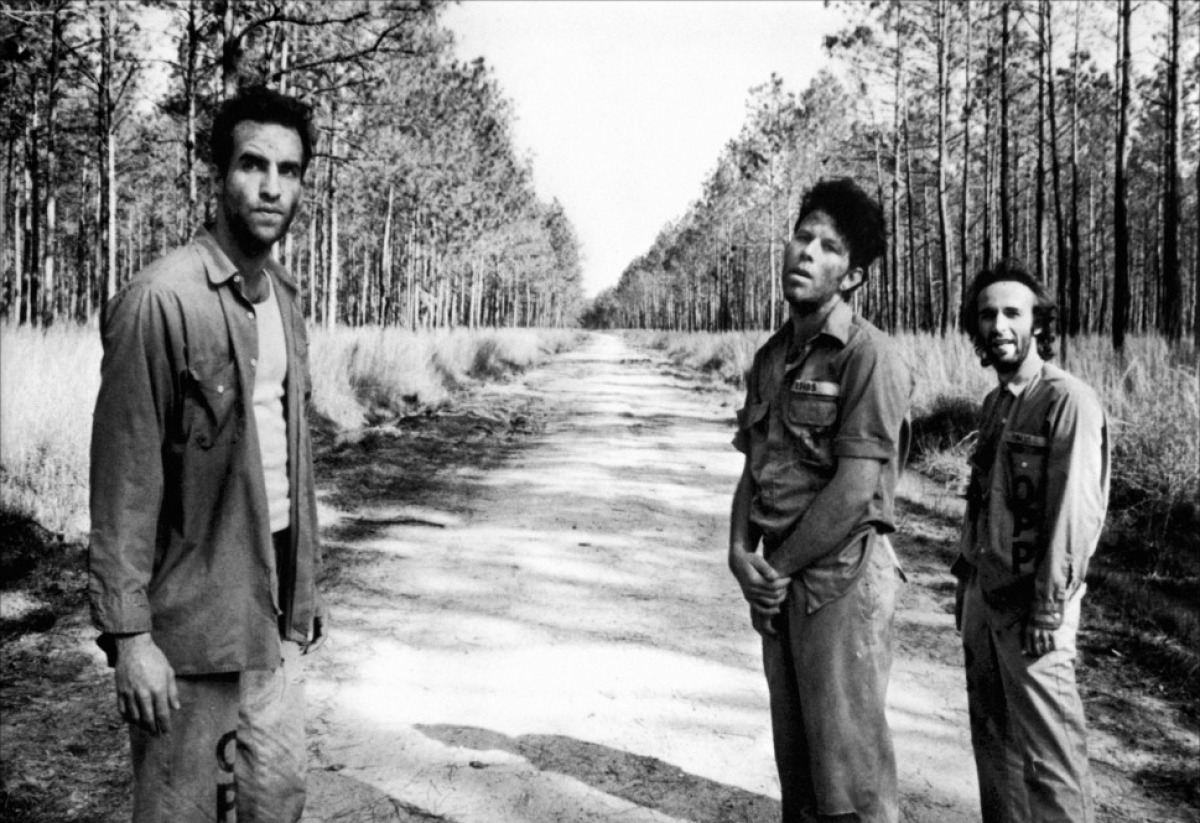 Down By Law: Roberto Benigni, Tom Waits, John Lurie
