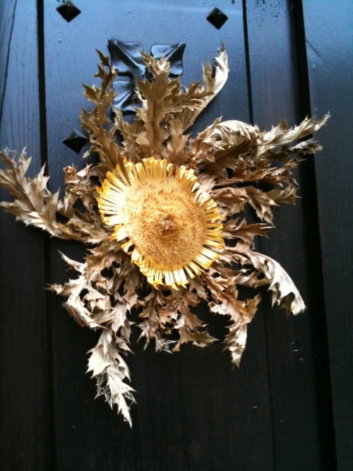 Sunflower to keep bad spirits away.