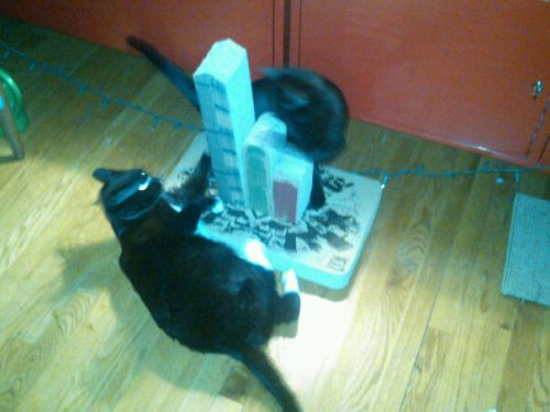 Going to battle- it's all part of the game in Kitteh Citteh. These thugs  aren't looking for hugs.