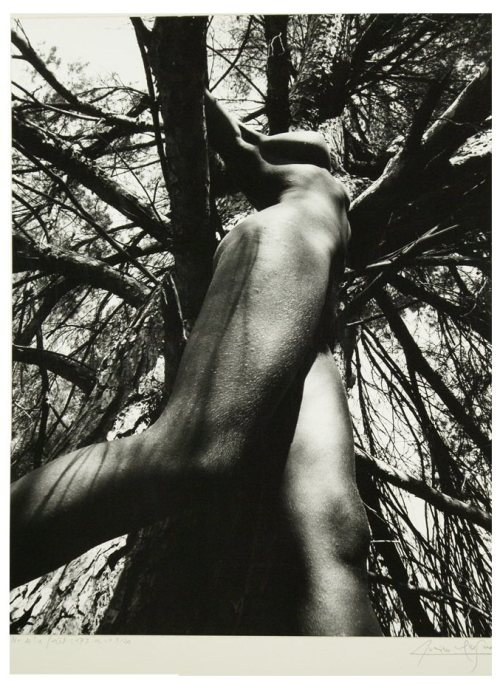 Nu de la Foret, 1973 by Lucien Clergue * [in the woods adventure continues….]
