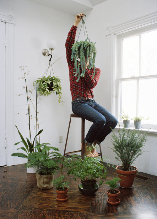 stevenbeckly:  more plants than places to sit, right now