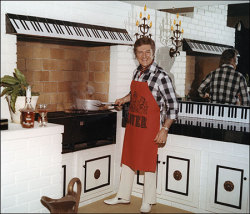 Oh hai! It's me, Liberace, just hangin' out in my kitchen, like I do.