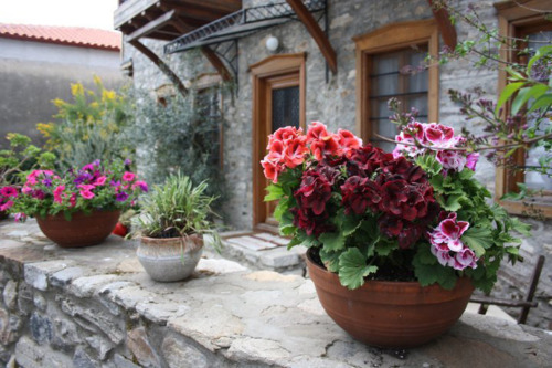 vampirica:  ysvoice:  | ♕ |  Epirus home - Hellas, Greece  | via elladaa  Homeland.