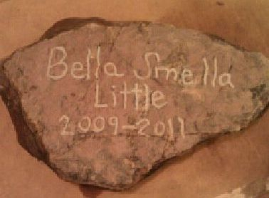 We finished Bella's headstone. And I have finished the photobook I was making in memory of her. I am ordering it tonight. I hope it turns out good.
