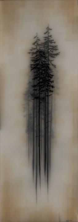 Brooks Salzwedel. Something about this appeals to the melancholic Scandinavian in my DNA!