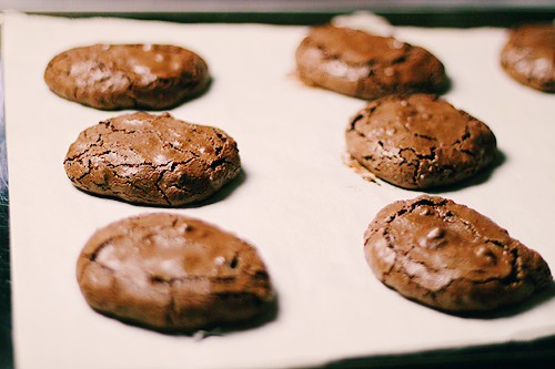 allyou-caneat:  Chewy Chocolate Cookies  Read the recipe. These sound so delish!