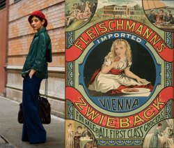 COLOR PALETTES: Street Fashion VS Vintage Package Design