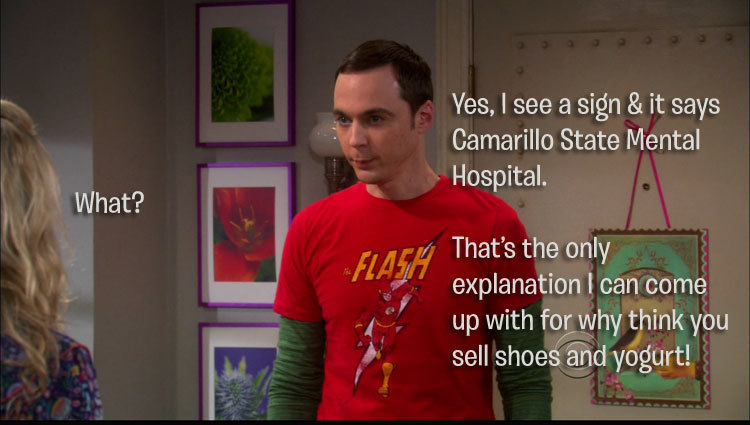 Sheldon: Yes, I see a sign, and it says Camarillo State Mental Hospital. Penny: What? Sheldon: That's the only explanation I can come up with for why you think you sell shoes and yogurt.