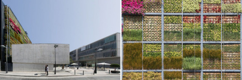 vertical gardensan vicent del raspeig, alicante - spain+: more info here (spanish)