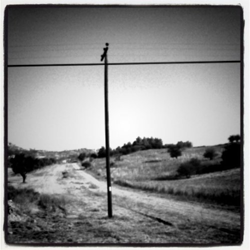 #road (Taken with instagram)