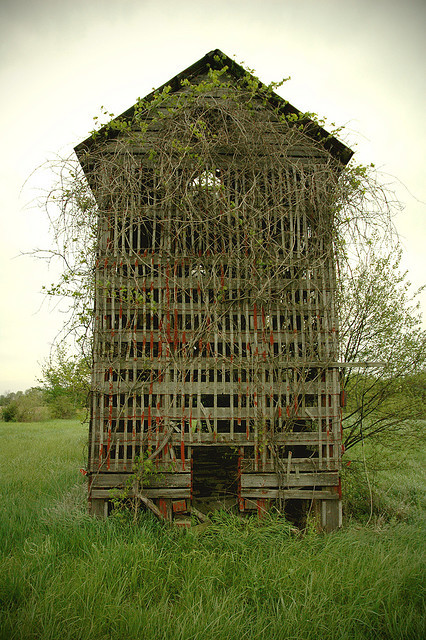 Corn Crib (by Sam)