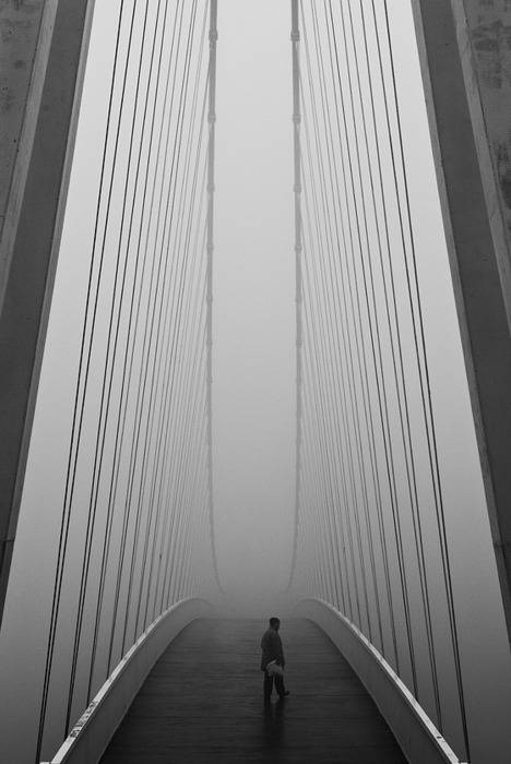 archiphile:  more bridges / bnw