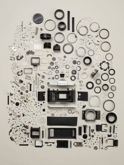 whitemystere:  Todd McLellan - Disassembled Pentax Camera