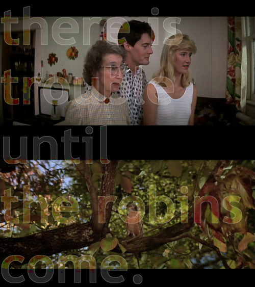"""There is trouble until the robins come."" — Sandy Blue Velvet (1986) Written and directed by David Lynch, starring Kyle Maclachlan, Isabella Rossellini, Dennis Hopper, and Laura Dern."