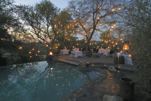 beautiful outdoor lighting i want something like this for my future wedding