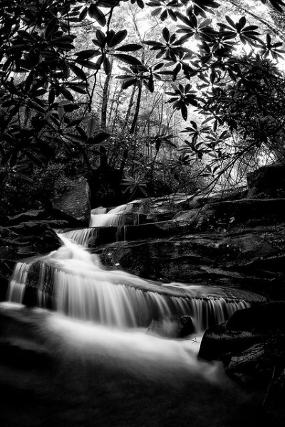 andrewvernon:  Photo of the Day: The Hidden Waterfall (by Andrew) I would tell you where this waterfall is, however I don't know exactly. My family has a cabin in NC, and our neighbors had mentioned a pretty little waterfall about 20 minutes away. But, the only way to find it is to drive the roads up there with your windows down. When you can hear it, you park your car and start walking towards the noise. Sure enough, this is what I found.   Stunning shot
