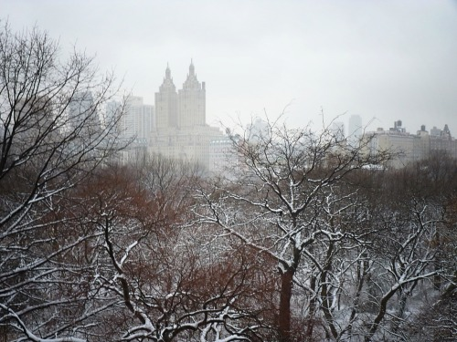 Central Park, Manhattan.  The view is from the top of Belvedere Castle in Central Park during a snowstorm. The buildings are surrounded by snow-fog. Belvedere Castle is the second highest vantage point in Central Park. It's a breathtaking and simultaneously jarring experience to be the only person up there in the middle of a storm.   (Clicking through the photo will take you to where it is located on Flickr where you can see larger versions and/or more information.)