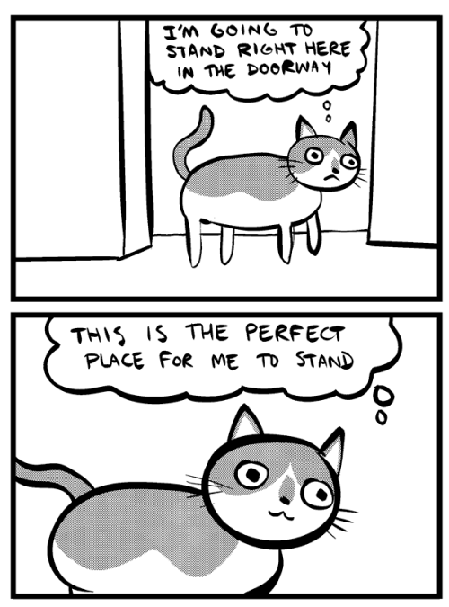 inky:  nedroidcomics:  CATS, am I RIGHT??  Cats. Nedroid. Tumblr. How does this have only 1,337+ notes.  … I was HOPING someone would give me reason to post this photo, since it's not quite HQ enough for flickr:  This fucking cat. ._. Hated him. Cute as fuck tho.