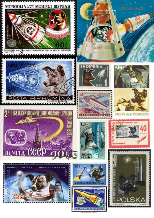 backtotheussr:  A collection of Laika, Belka and Strelka postage stamps.