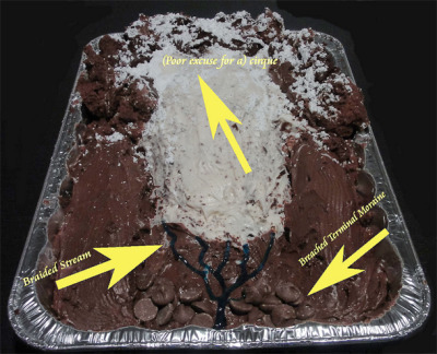 Accretionary Wedge #30: the Bake Sale - Dana Hunter's glaciated cake based on the Cascade Mountains via AGU Blogosphere