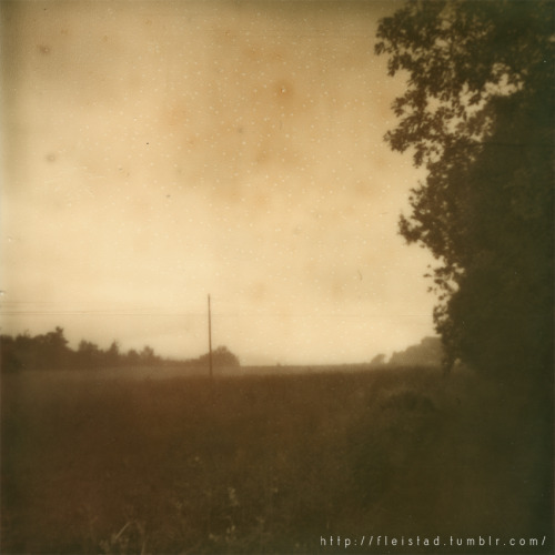 Foggy morning - Impossible PX600 film, matured for several months.