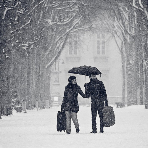 kari-shma:  Paris under the snow (by Gregory Bastien)