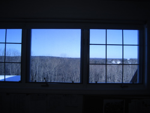 What would you give to see this outside of your classroom window? An arm, maybe?