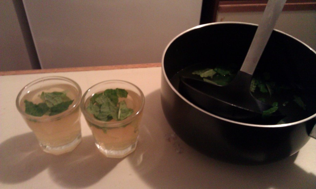 jungle juice… not really. more like mojitos (Taken with picplz.)