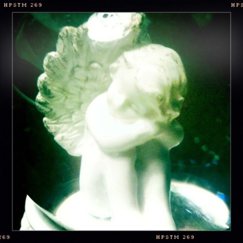 Little Angel  John S Lens, Pistil Film, No Flash, Taken with Hipstamatic