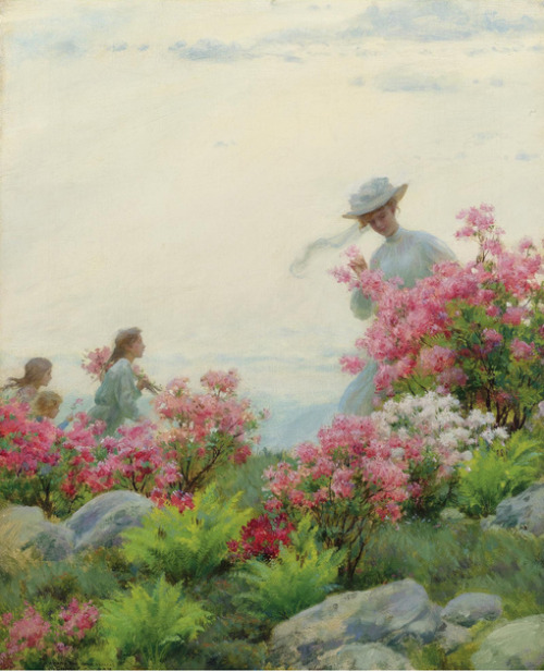 shaonian14: