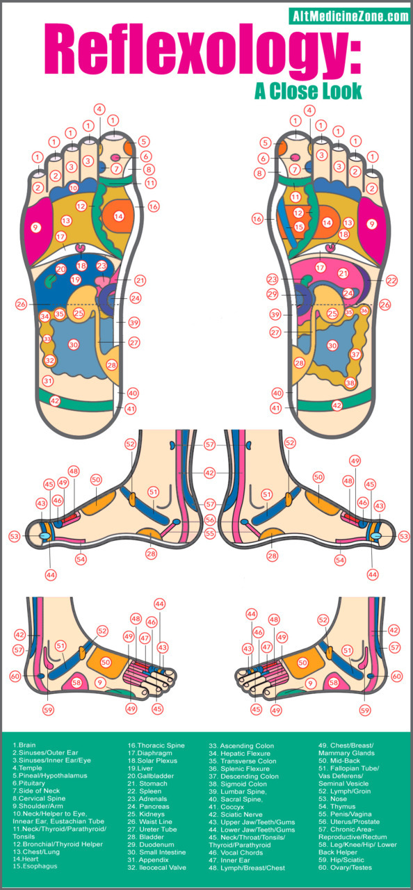 Reflexology via Expedient InfoMedia Who's got some needles? I'm ready to start.