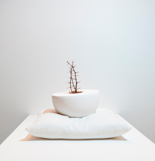 Shane Porter contemporary ceramics magazine