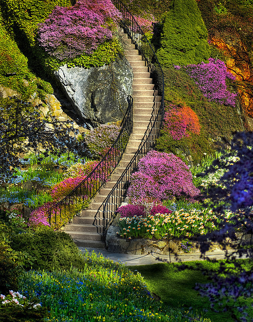 downlo:  garden-artistry:  Butchart Garden Stairway (by John Rogers)  Stunning!  Oooh I remember visiting there when I was 13. Wonderful place.